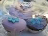tl-muffins